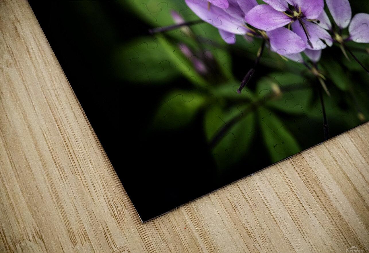 Beeplant HD Sublimation Metal print