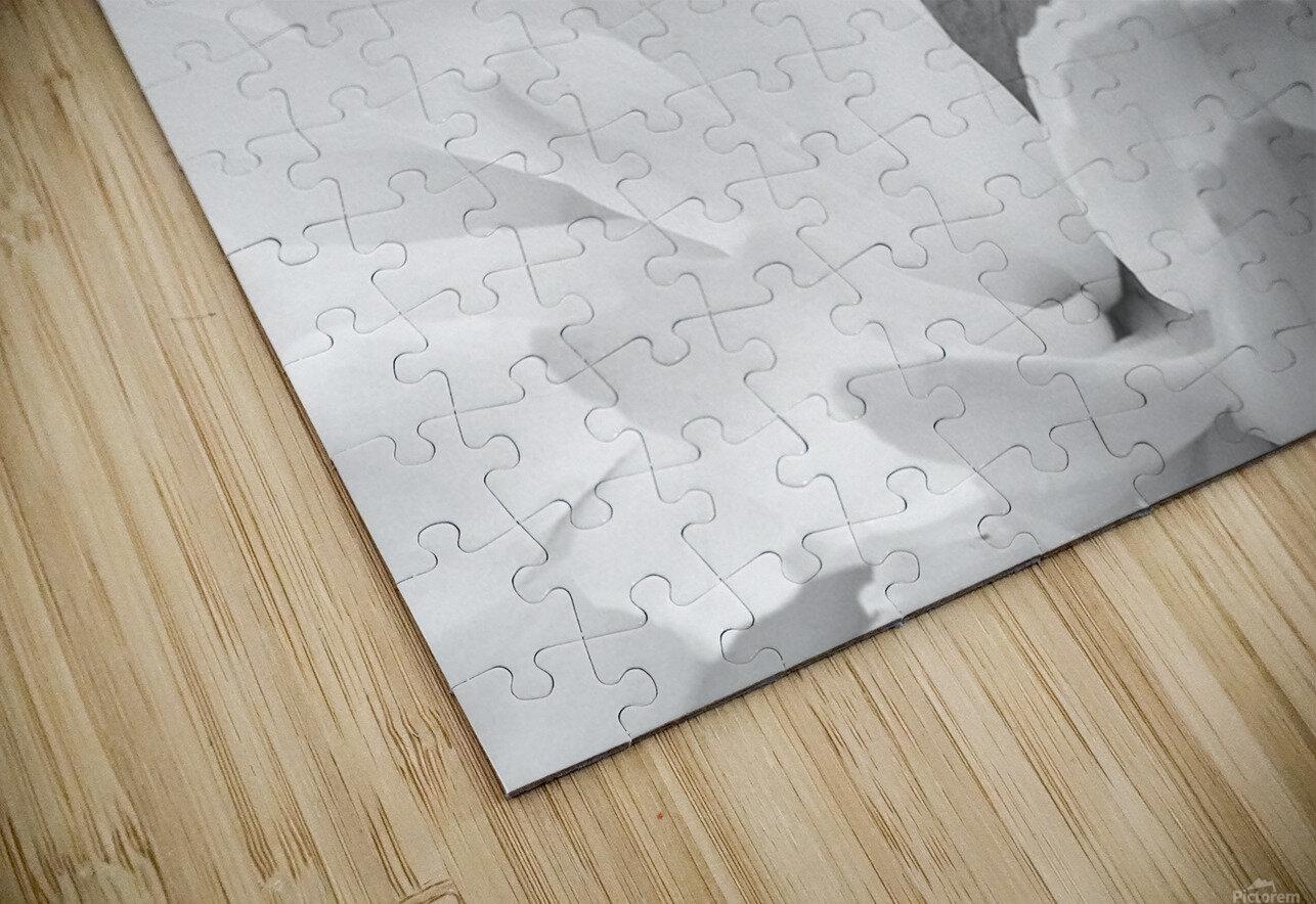 Peony III Black and White HD Sublimation Metal print