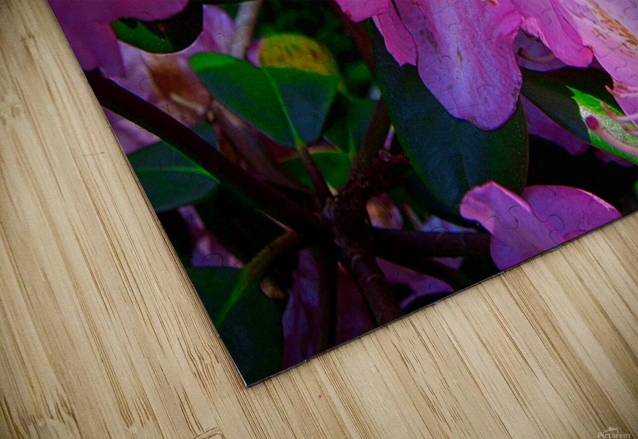 PINK FLOWER HD Sublimation Metal print