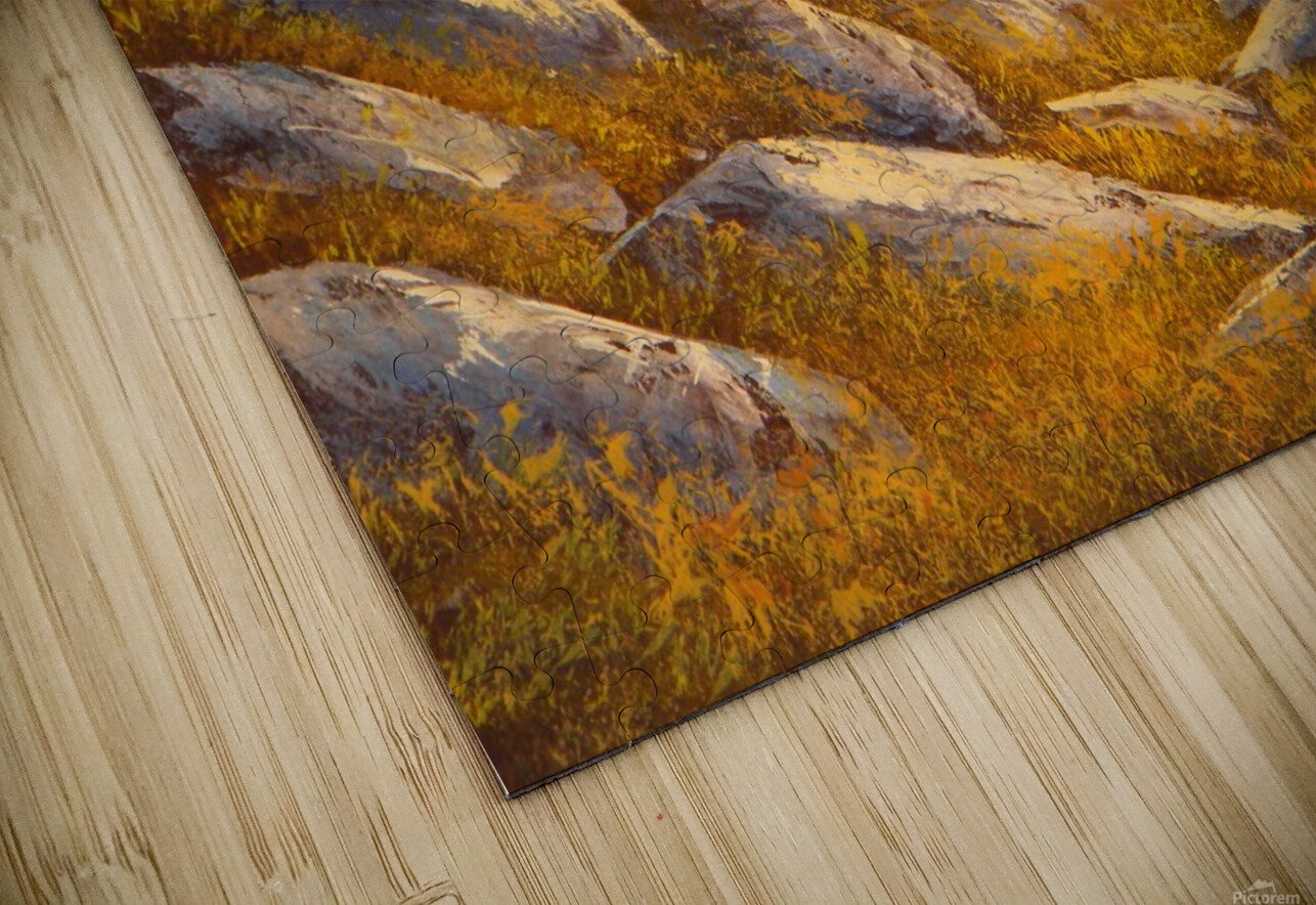 Sunset Spruces HD Sublimation Metal print