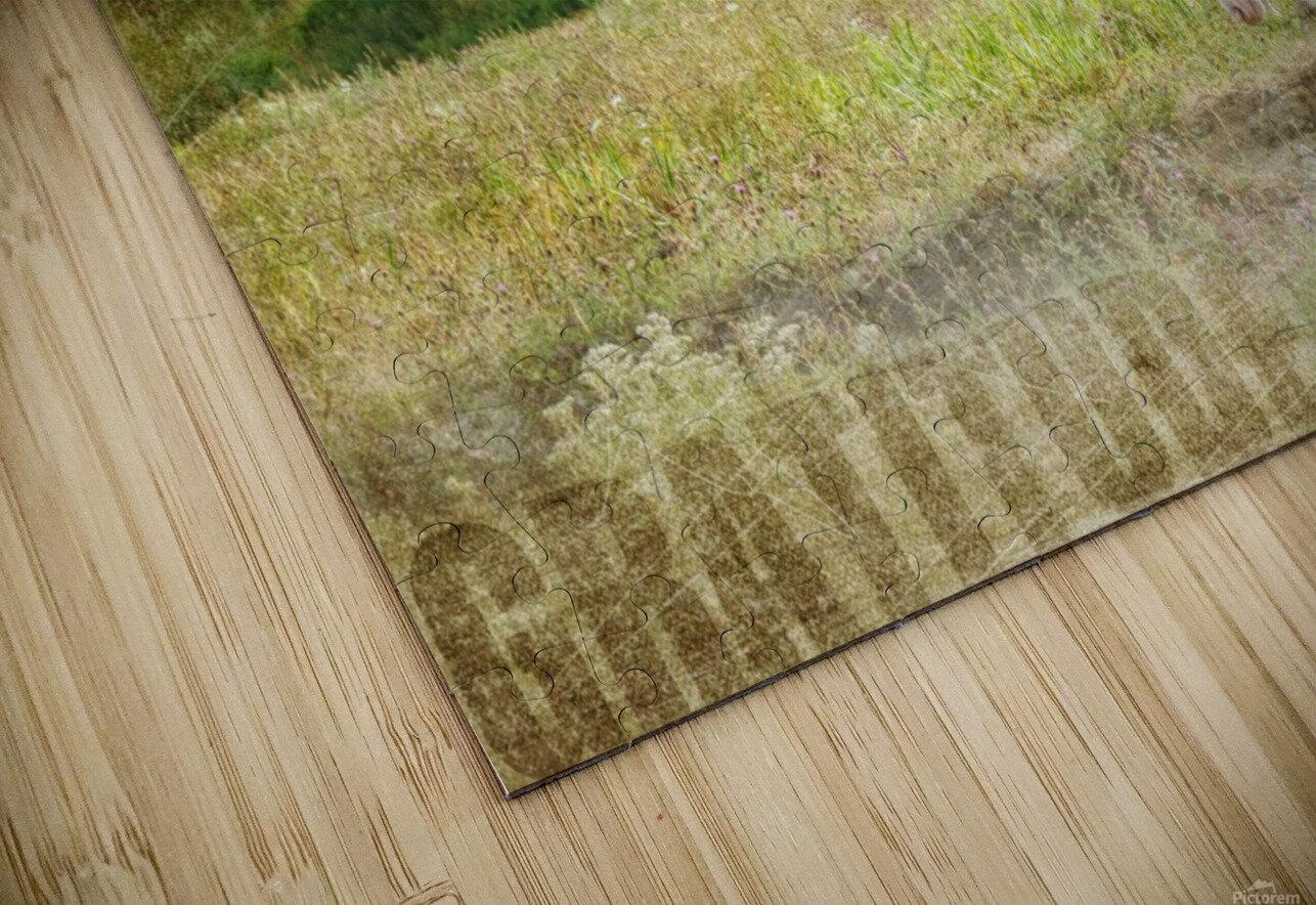 Gratitude HD Sublimation Metal print