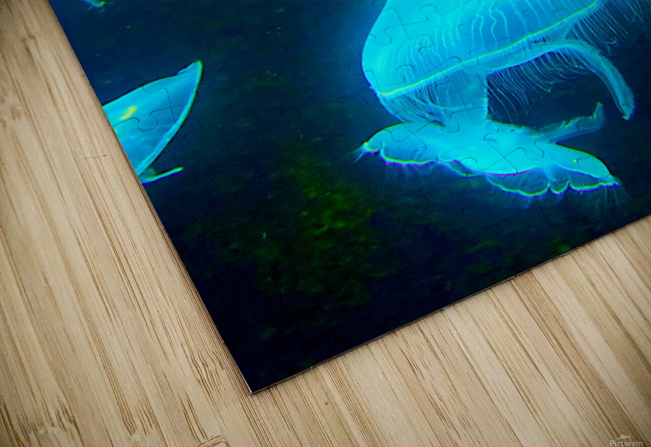 Venture into the Abyss HD Sublimation Metal print