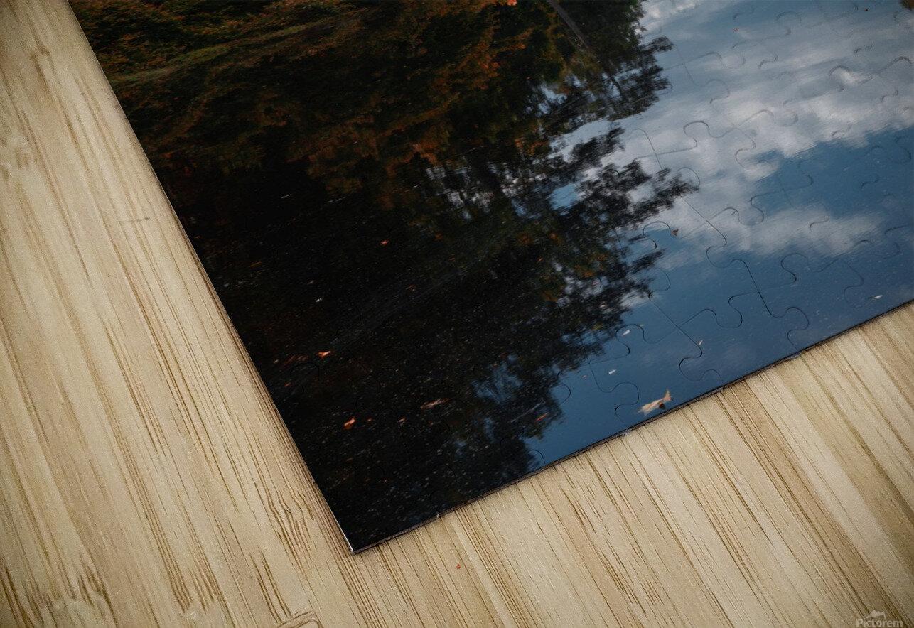 Vantage of the Inner Speaker HD Sublimation Metal print