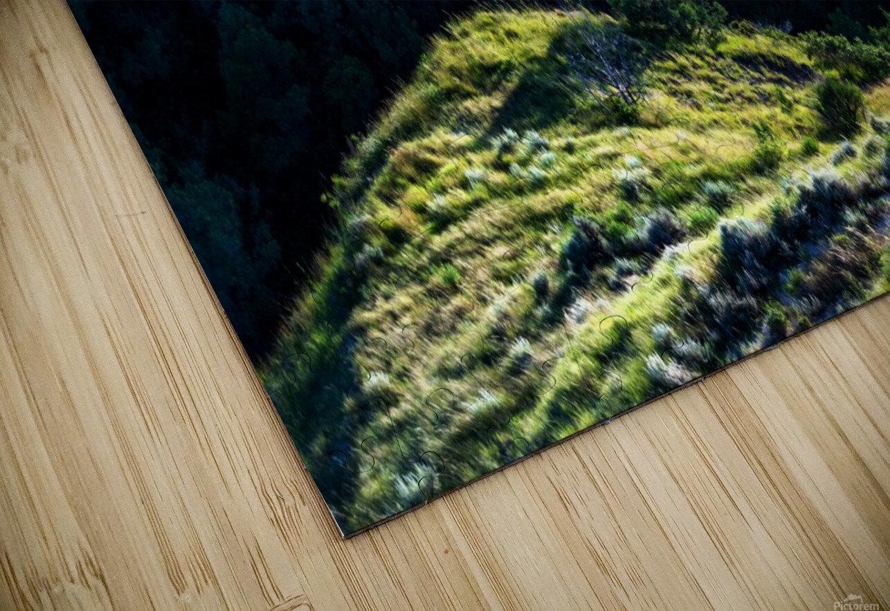 Lonesome Tree HD Sublimation Metal print