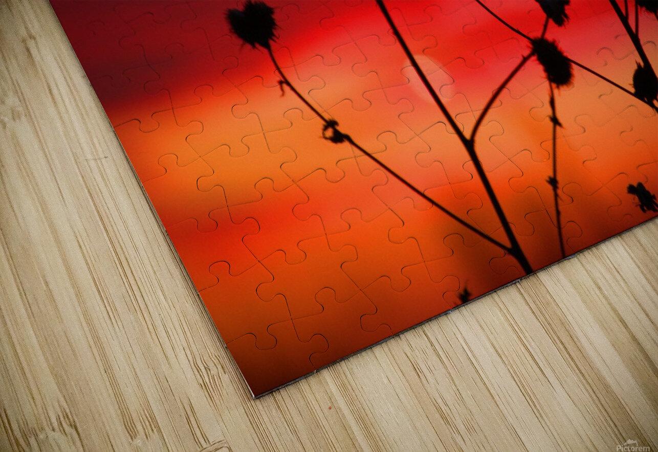 Missouri Sunset part 2 HD Sublimation Metal print