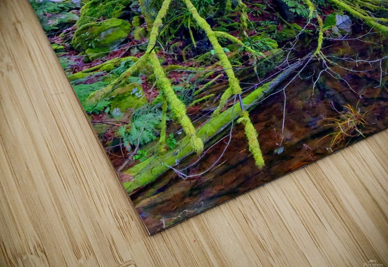 MOSSY BRANCHES HD Sublimation Metal print