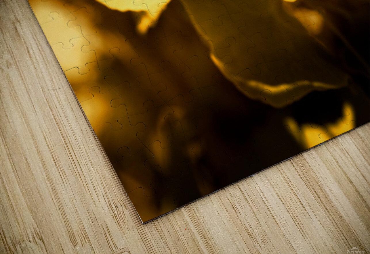 Ginkgo HD Sublimation Metal print