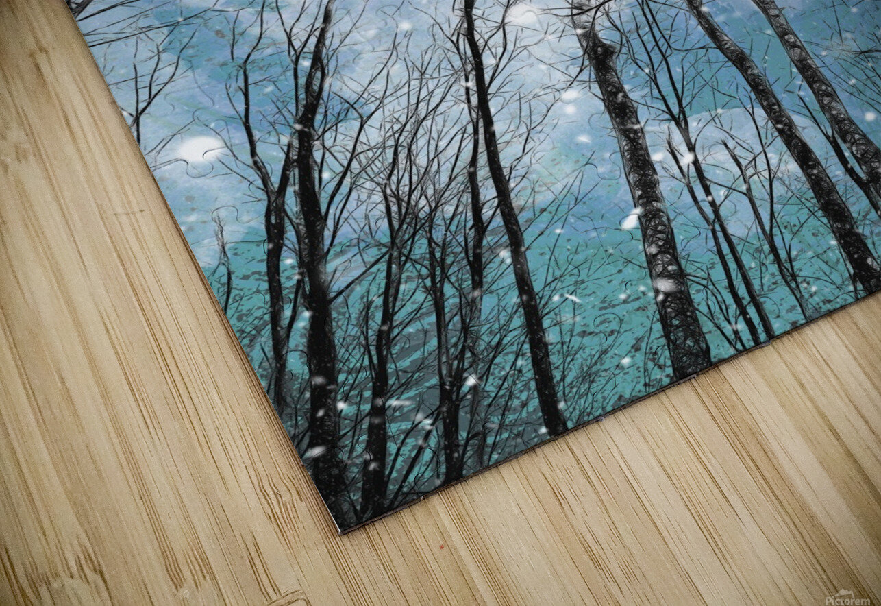 Winter Trees  HD Sublimation Metal print