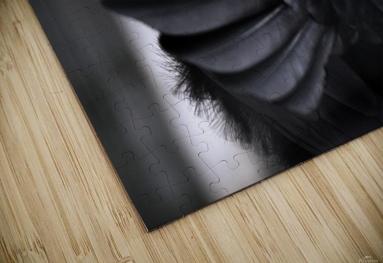 La corneille HD Sublimation Metal print