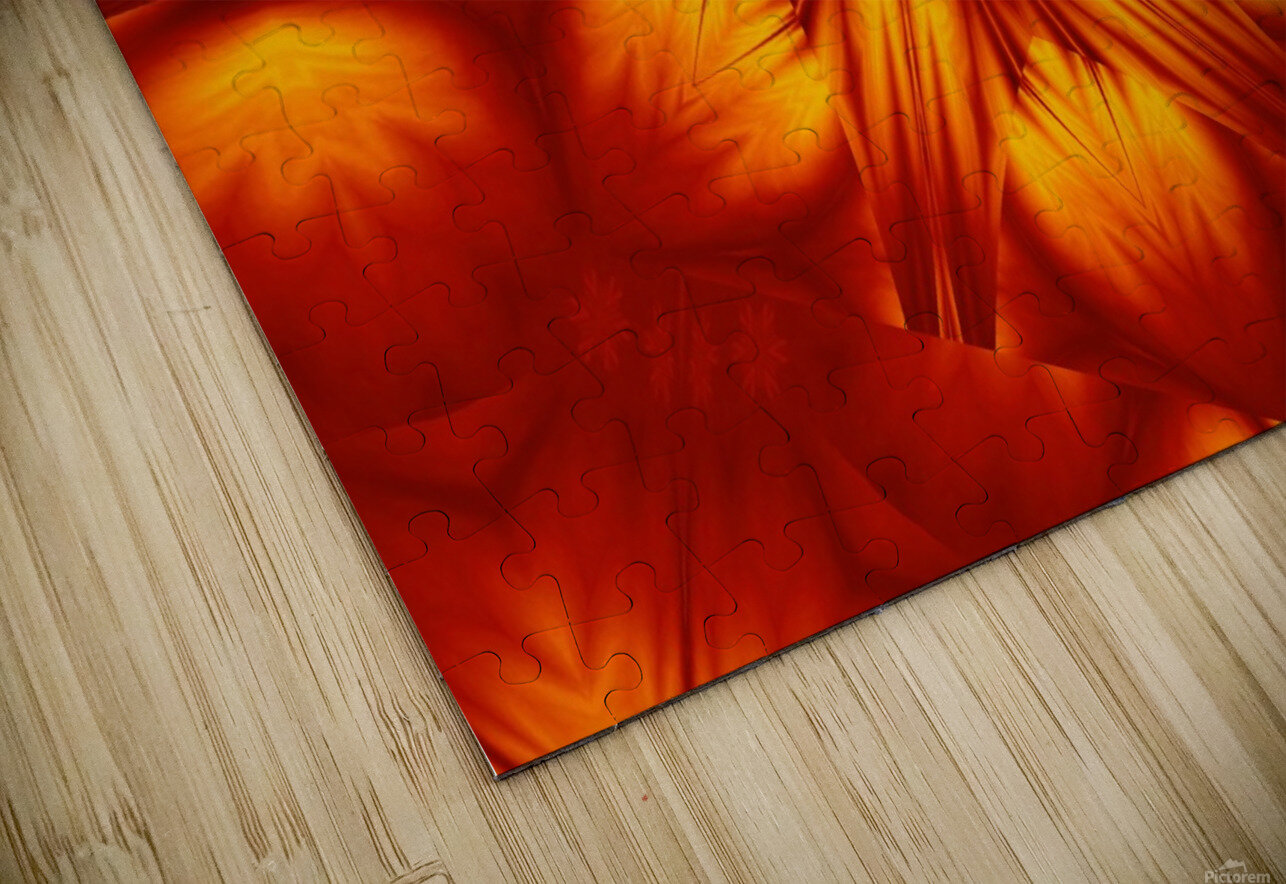 Fire Flowers 74 HD Sublimation Metal print