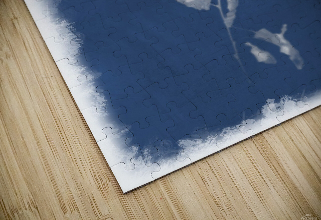 Cyanotype 101 HD Sublimation Metal print