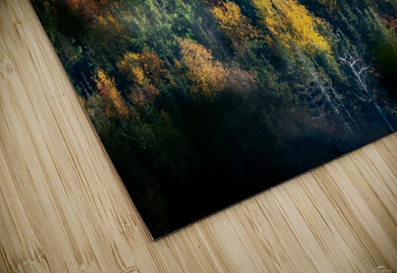 autumn abstract view HD Sublimation Metal print