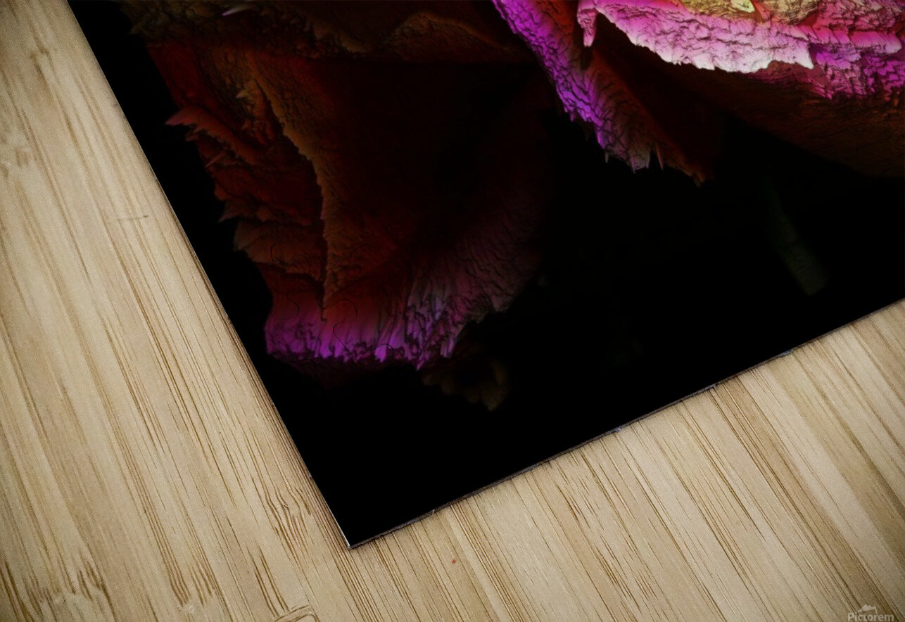Textured Rose HD Sublimation Metal print