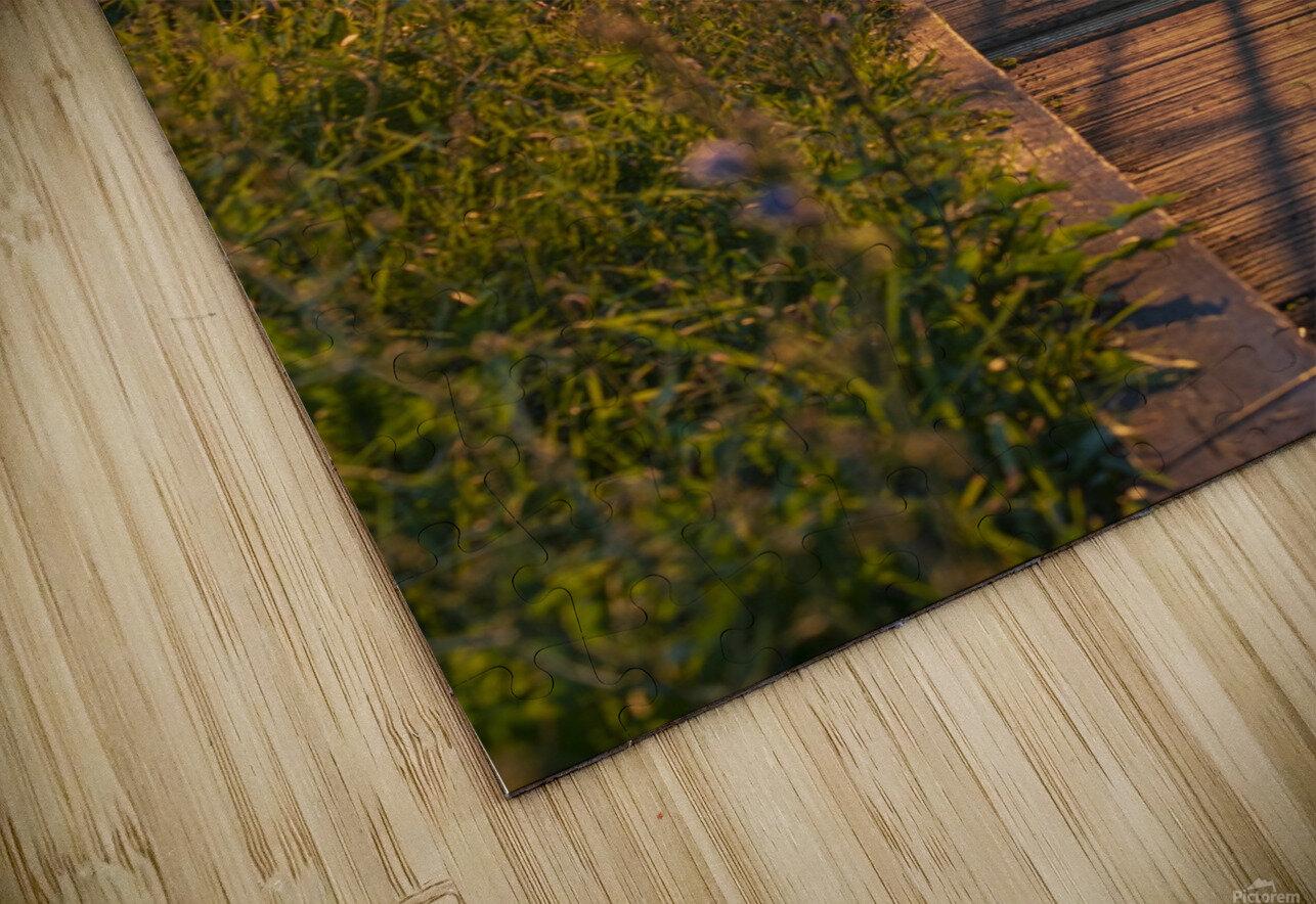 BridgeBoardwalk HD Sublimation Metal print