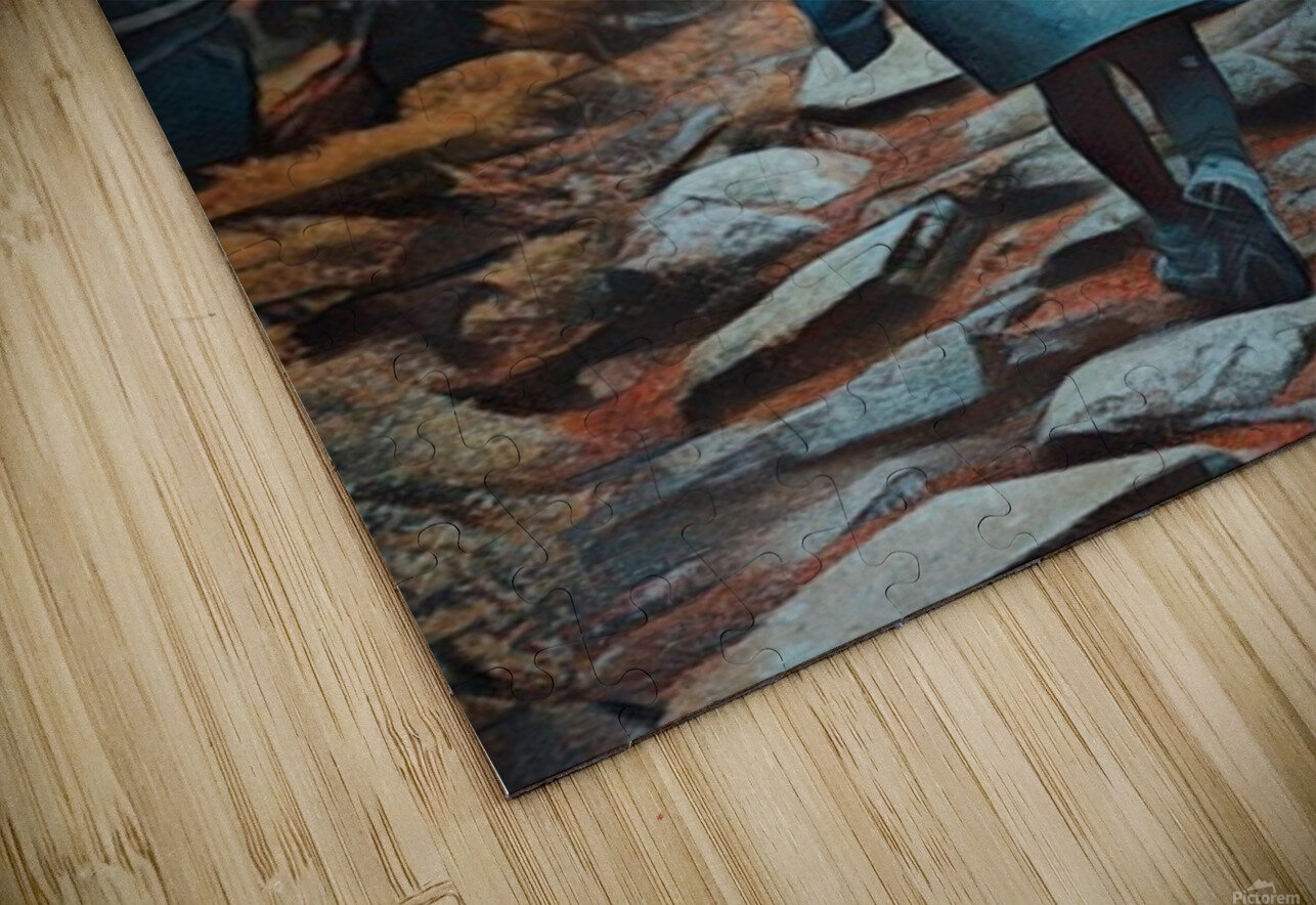 1 HD Sublimation Metal print