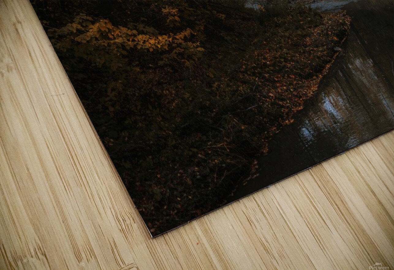 Lumiere automnale HD Sublimation Metal print