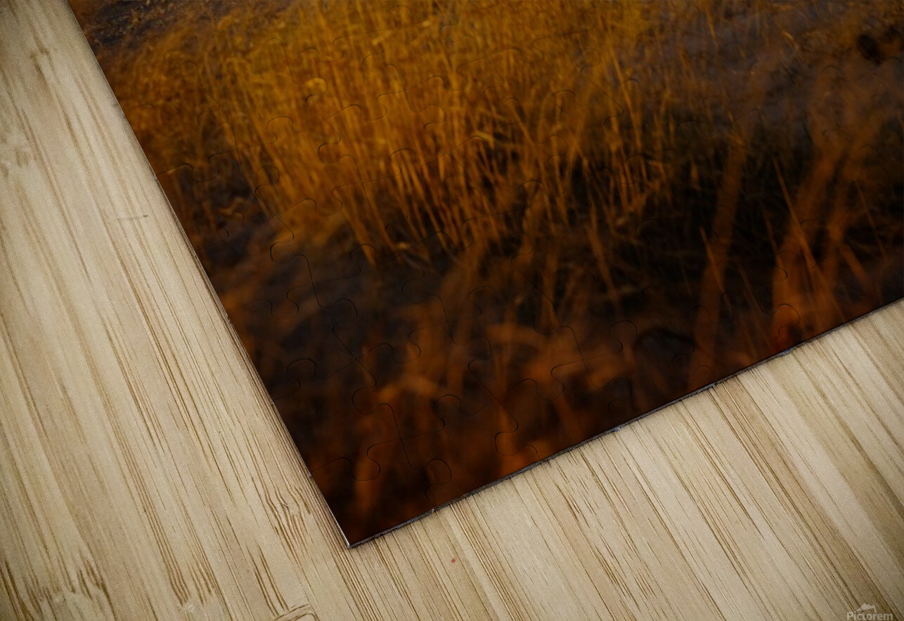 Conneaut Lighthouse Lake Erie HD Sublimation Metal print