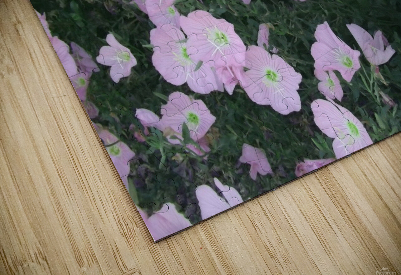 Flower Garden 2 HD Sublimation Metal print