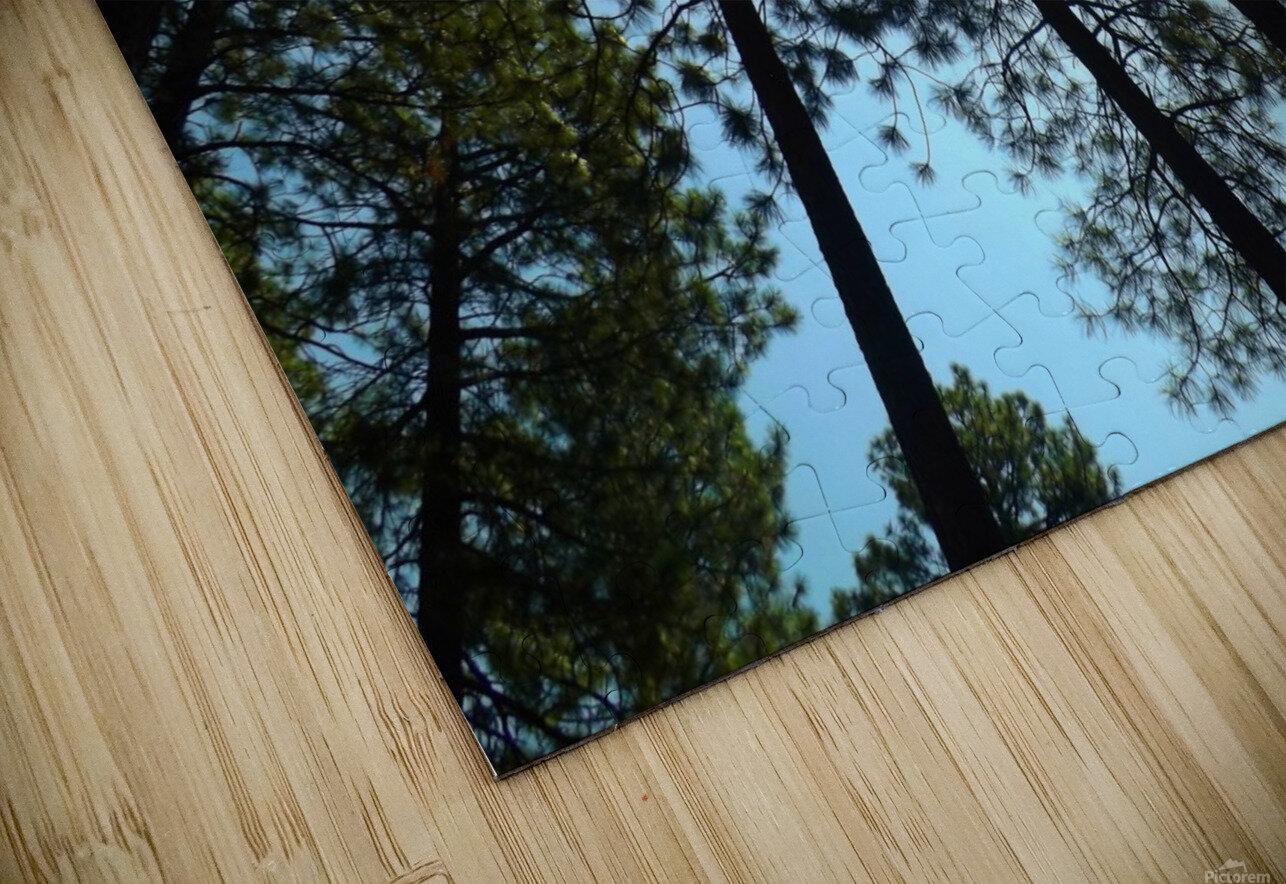 Look Up Impression de sublimation métal HD