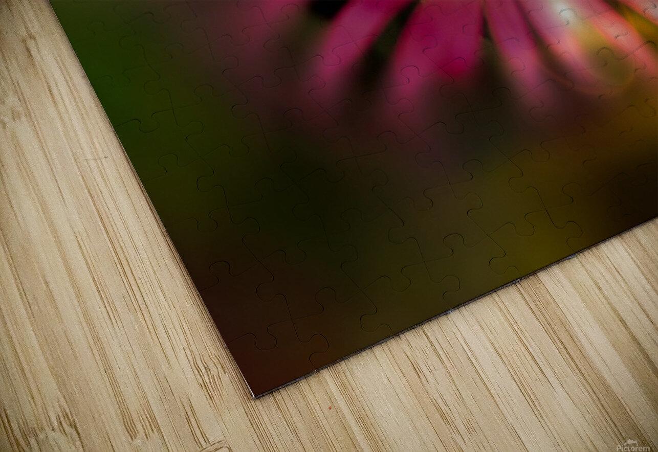 little sunshine HD Sublimation Metal print