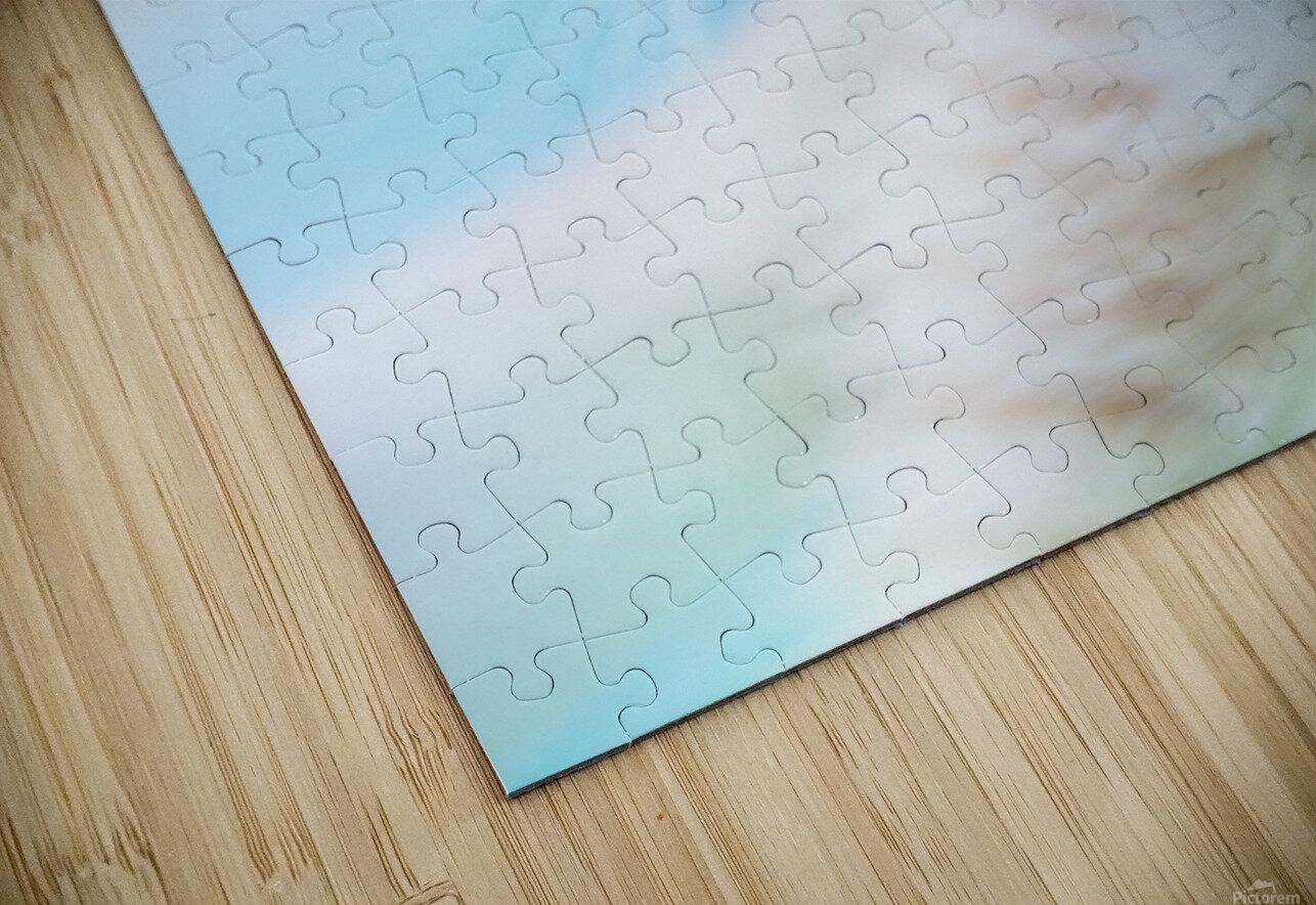 catshadow HD Sublimation Metal print