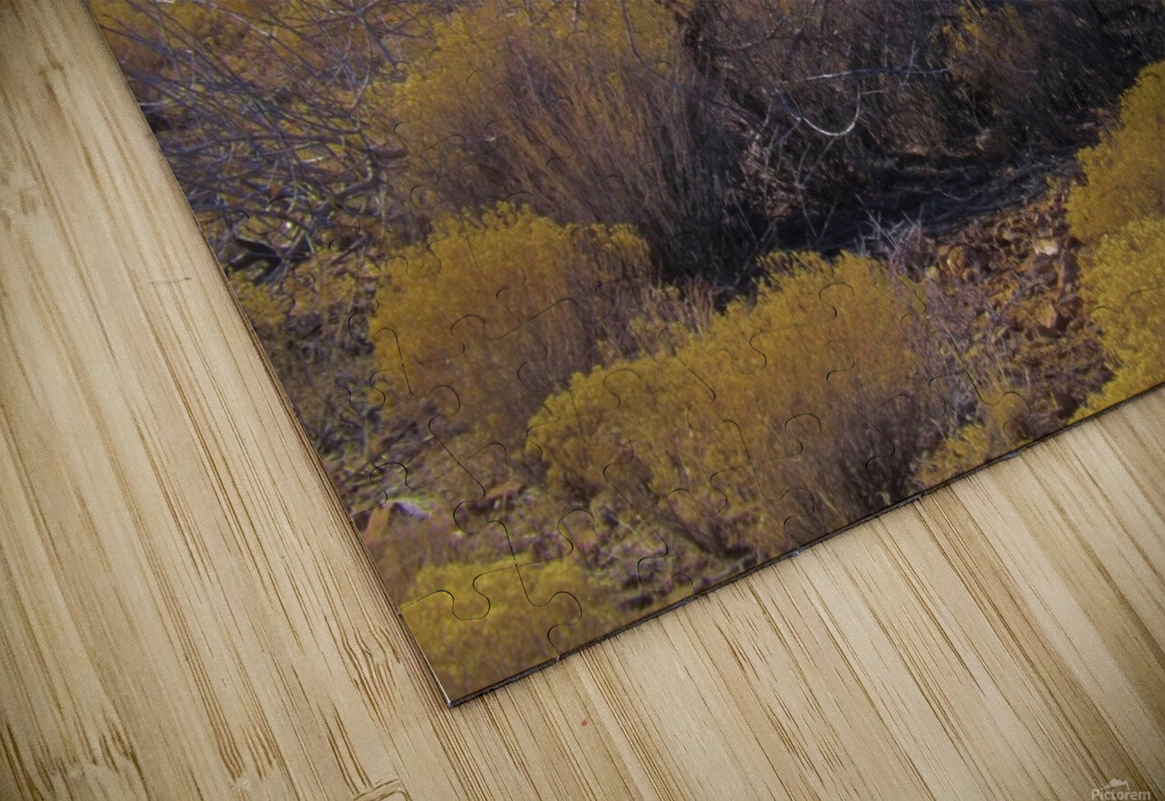 Weeds HD Sublimation Metal print