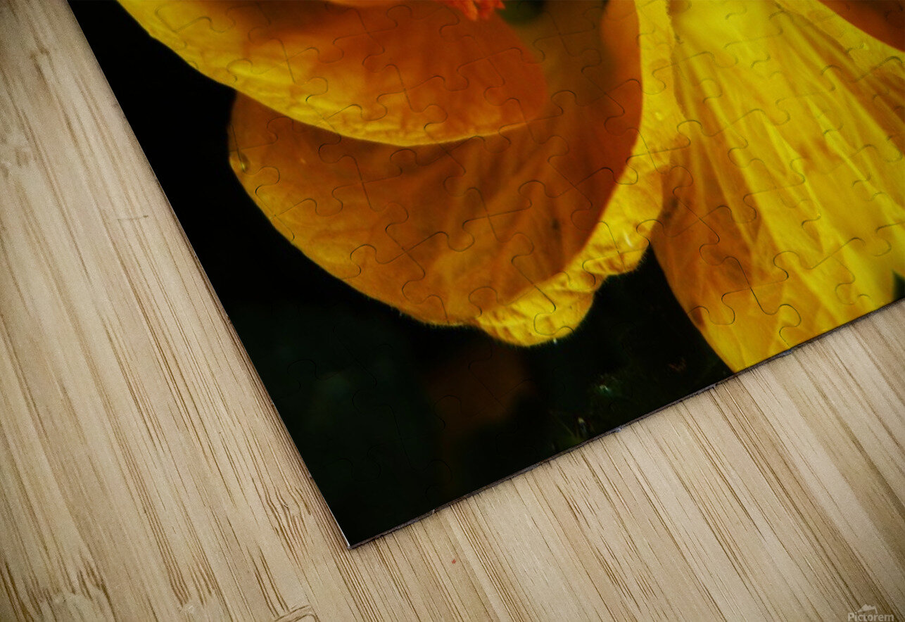 flower91 HD Sublimation Metal print