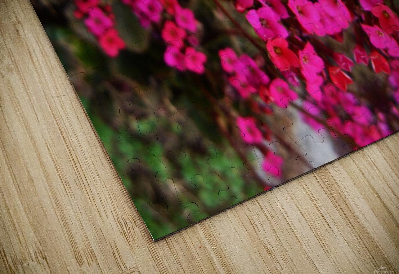 flower29 HD Sublimation Metal print