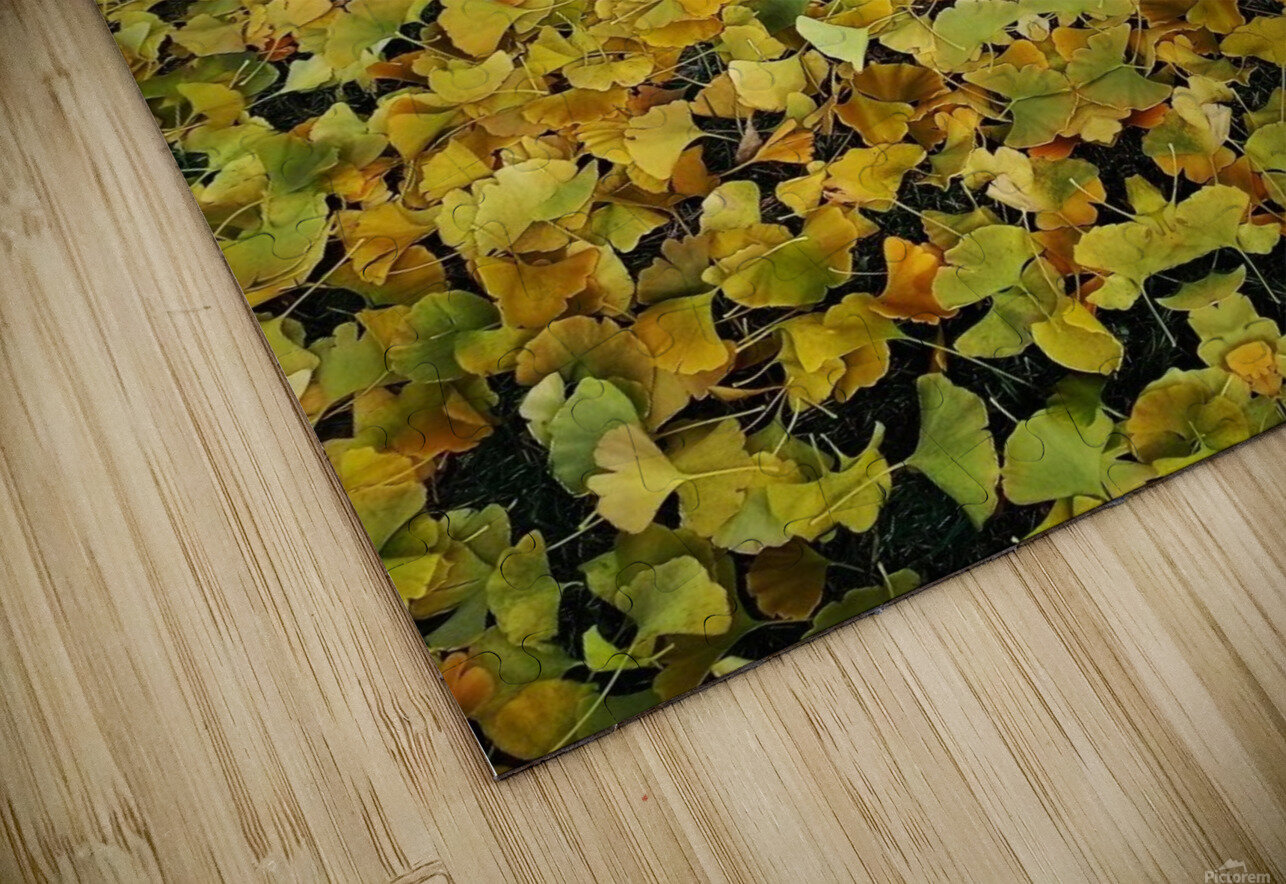 Autumn1 HD Sublimation Metal print