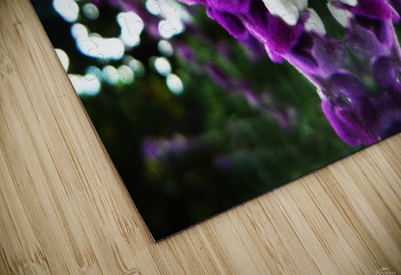 flower89 HD Sublimation Metal print