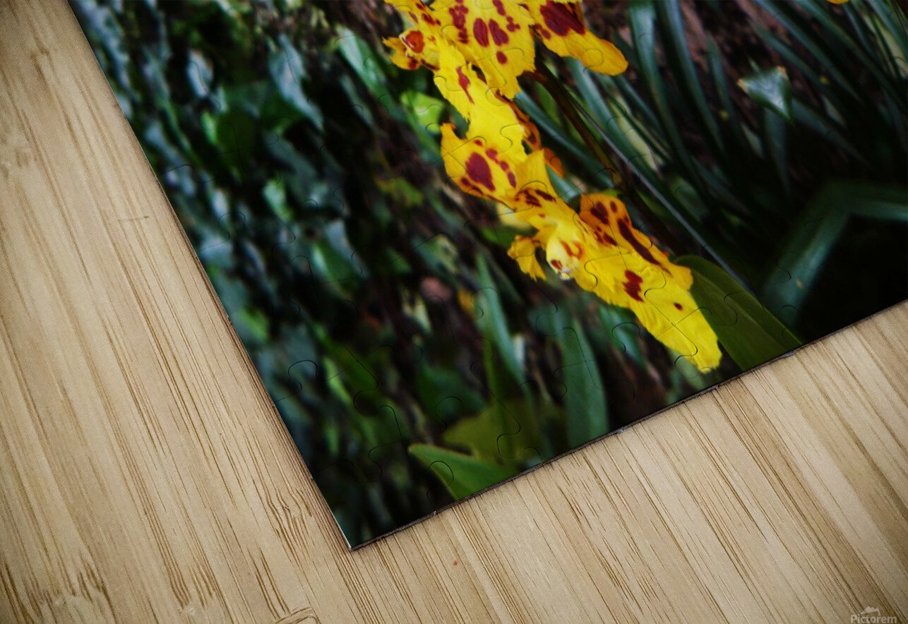 flower55 HD Sublimation Metal print