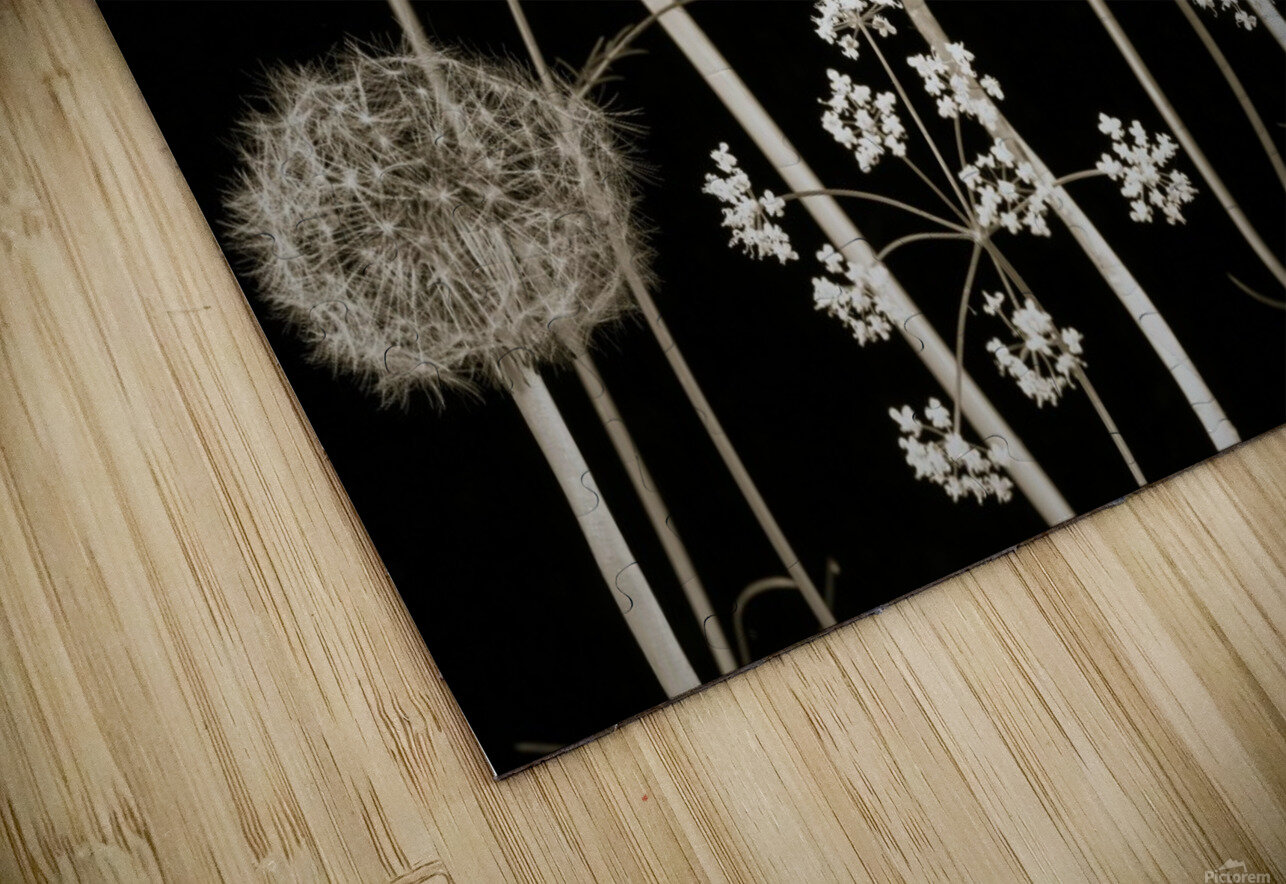Meadow flowers HD Sublimation Metal print