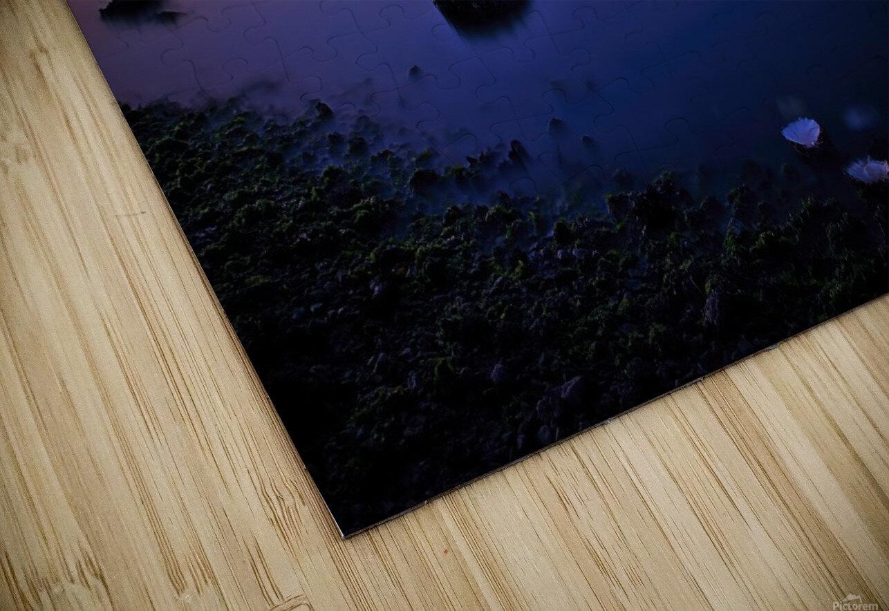 Vancouver Skyline HD Sublimation Metal print
