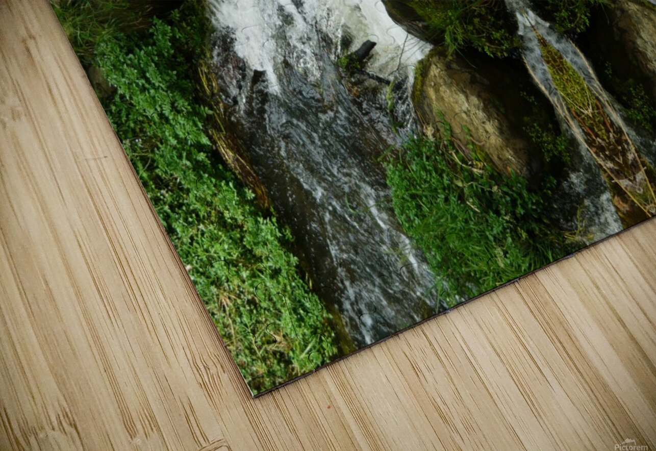 Green5 HD Sublimation Metal print