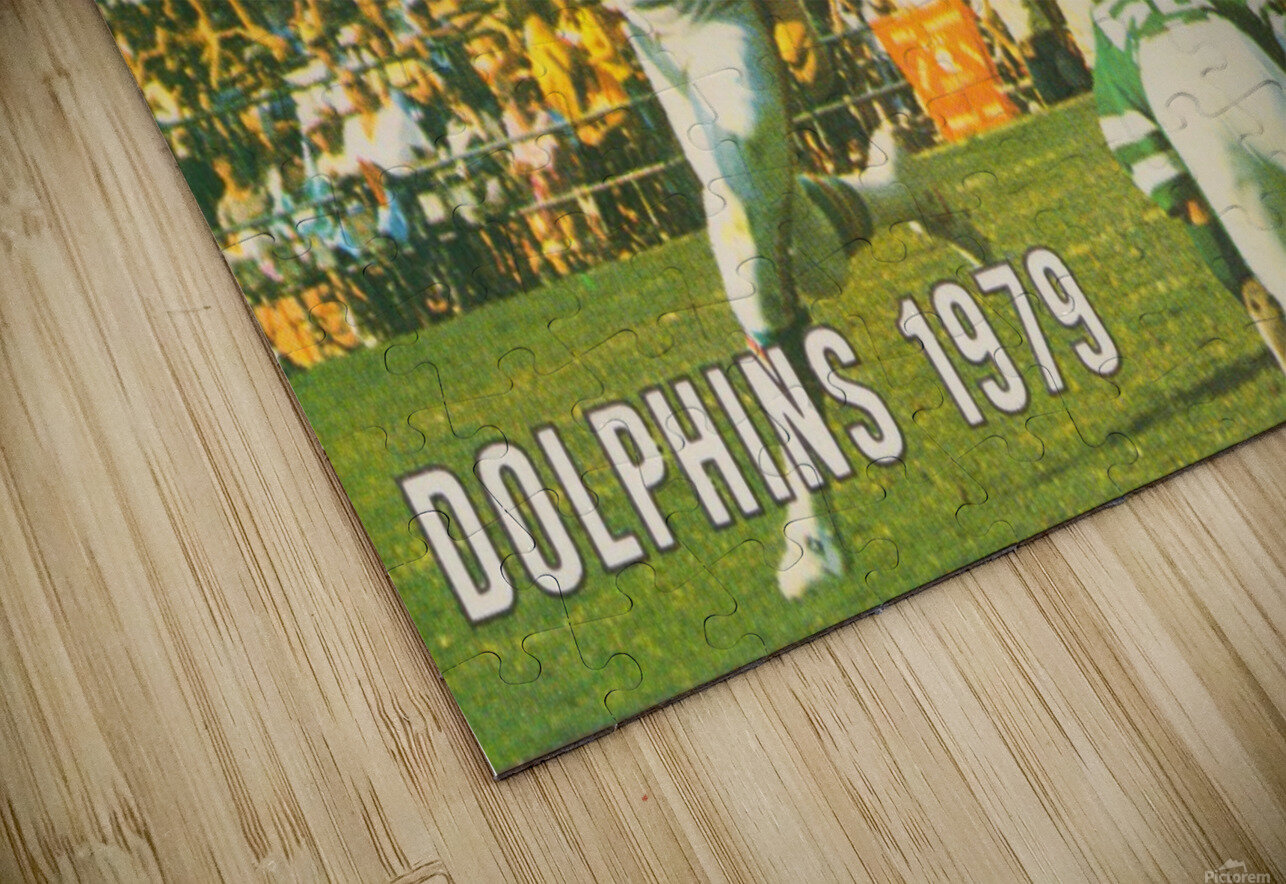 1979 Miami Dolphins Art HD Sublimation Metal print