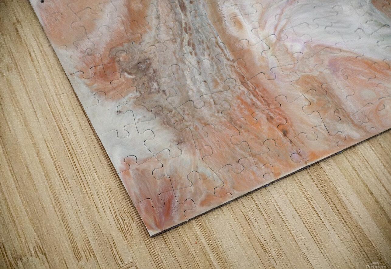 Jupiter HD Sublimation Metal print