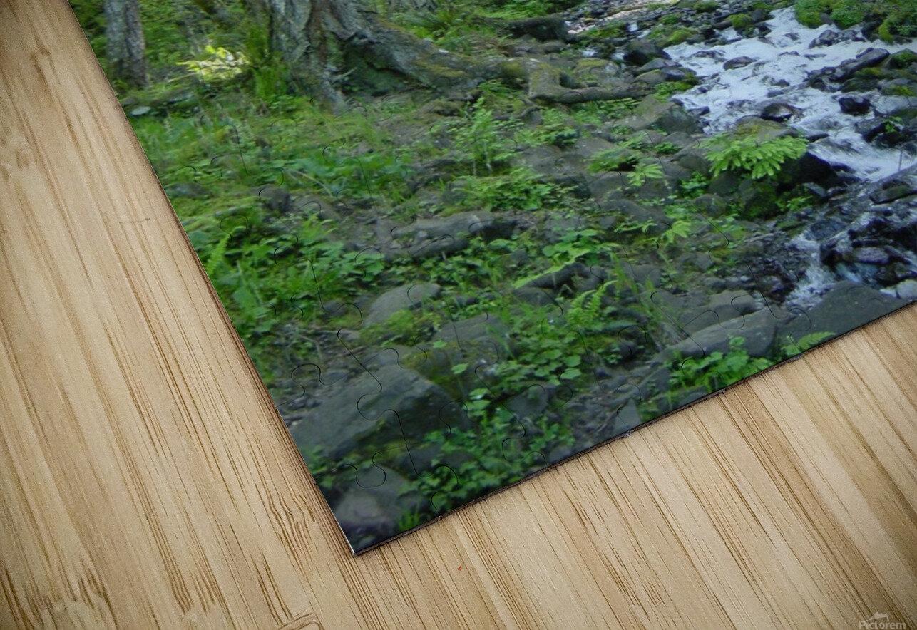 Forest Dreams HD Sublimation Metal print