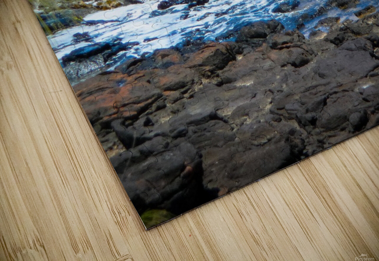 At the Bay HD Sublimation Metal print