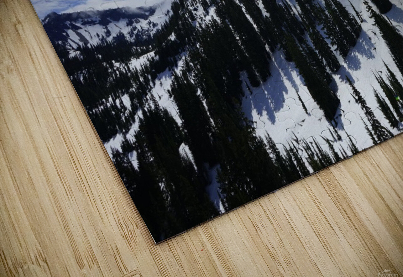 Powder HD Sublimation Metal print