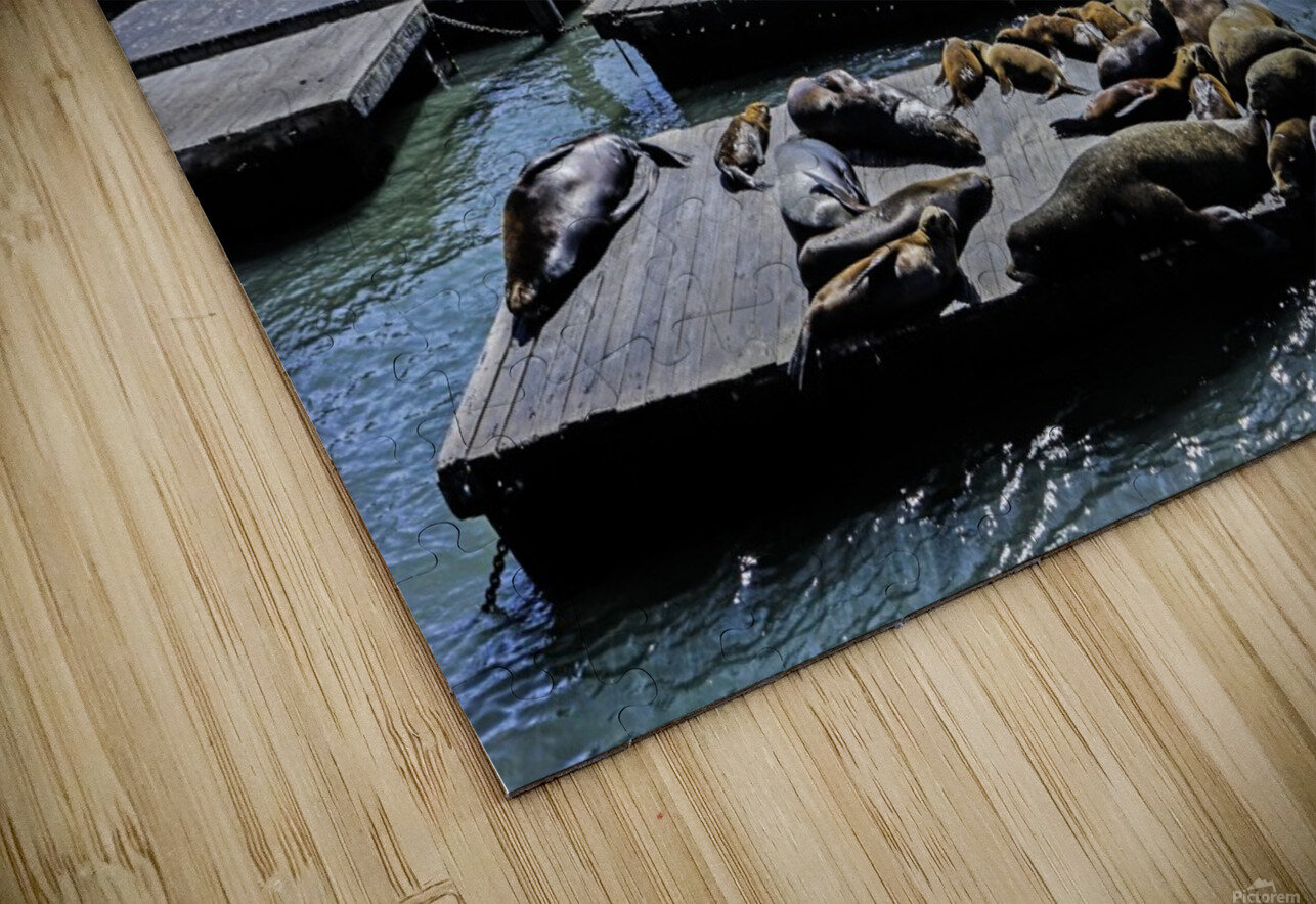 The Wharf @ San Francisco HD Sublimation Metal print