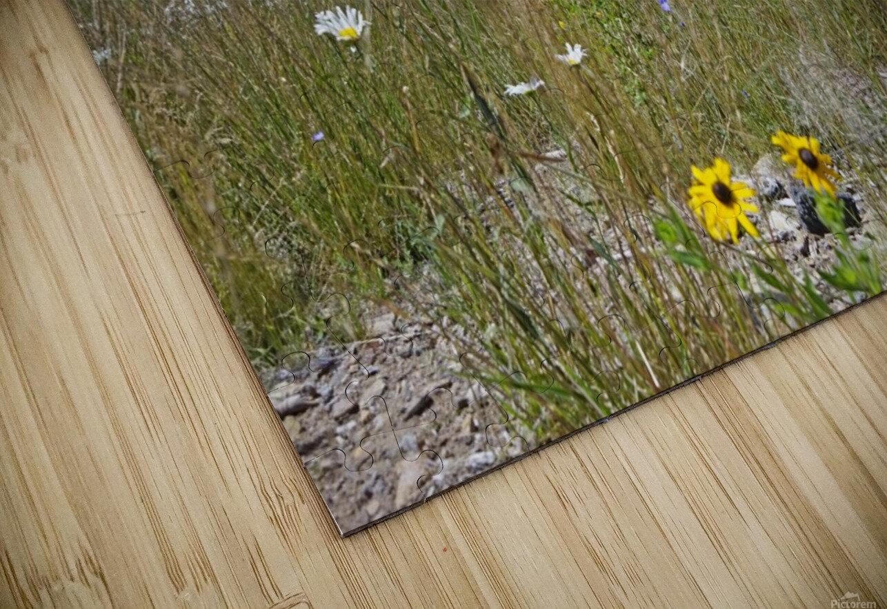 Sierra Nevada in Spring 5 of 8 HD Sublimation Metal print