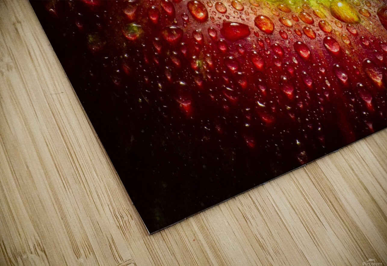 Red Apple HD Sublimation Metal print