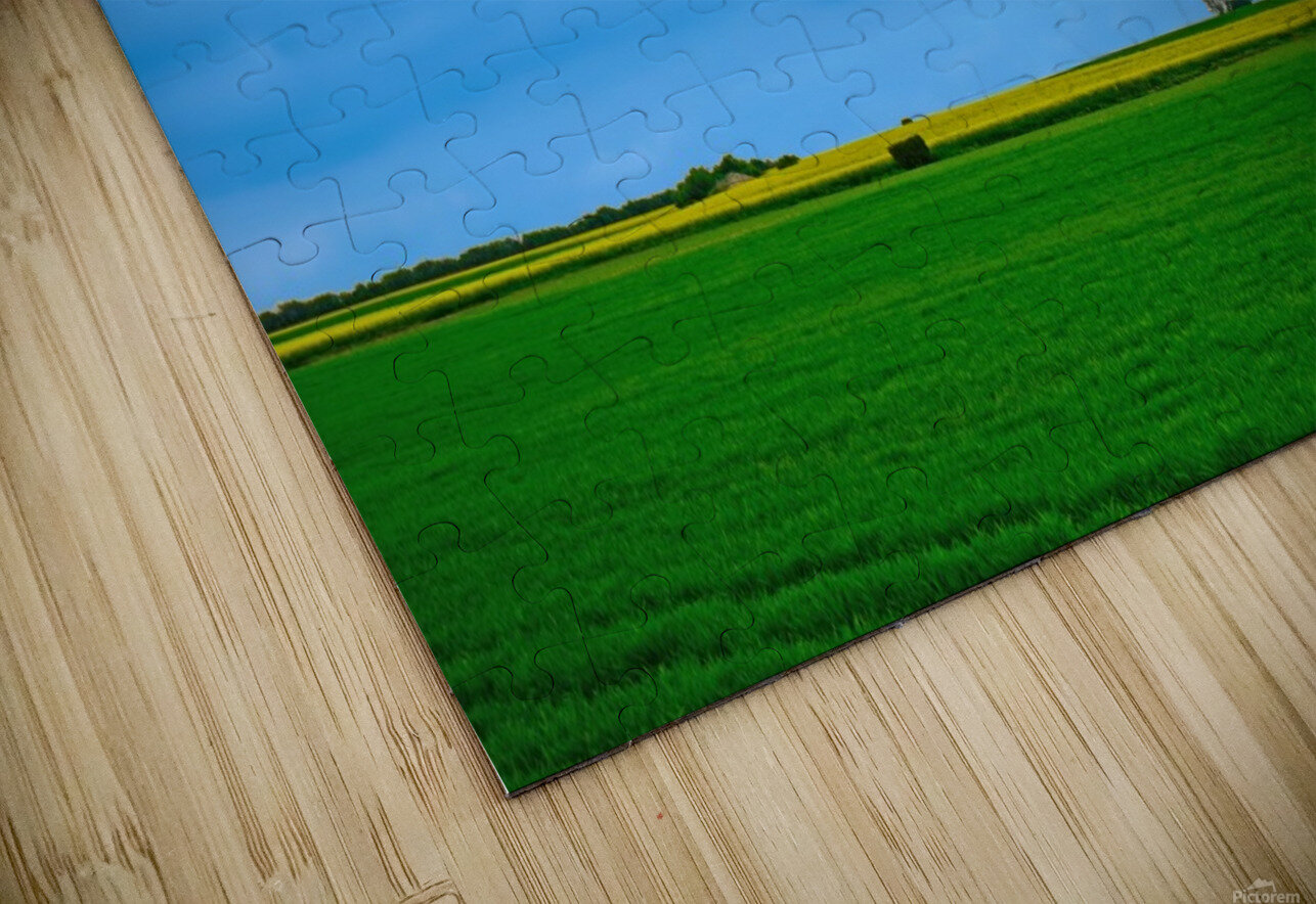 Painted Fields - 2017 Gallery Artwork of the Year - Minimalism HD Sublimation Metal print