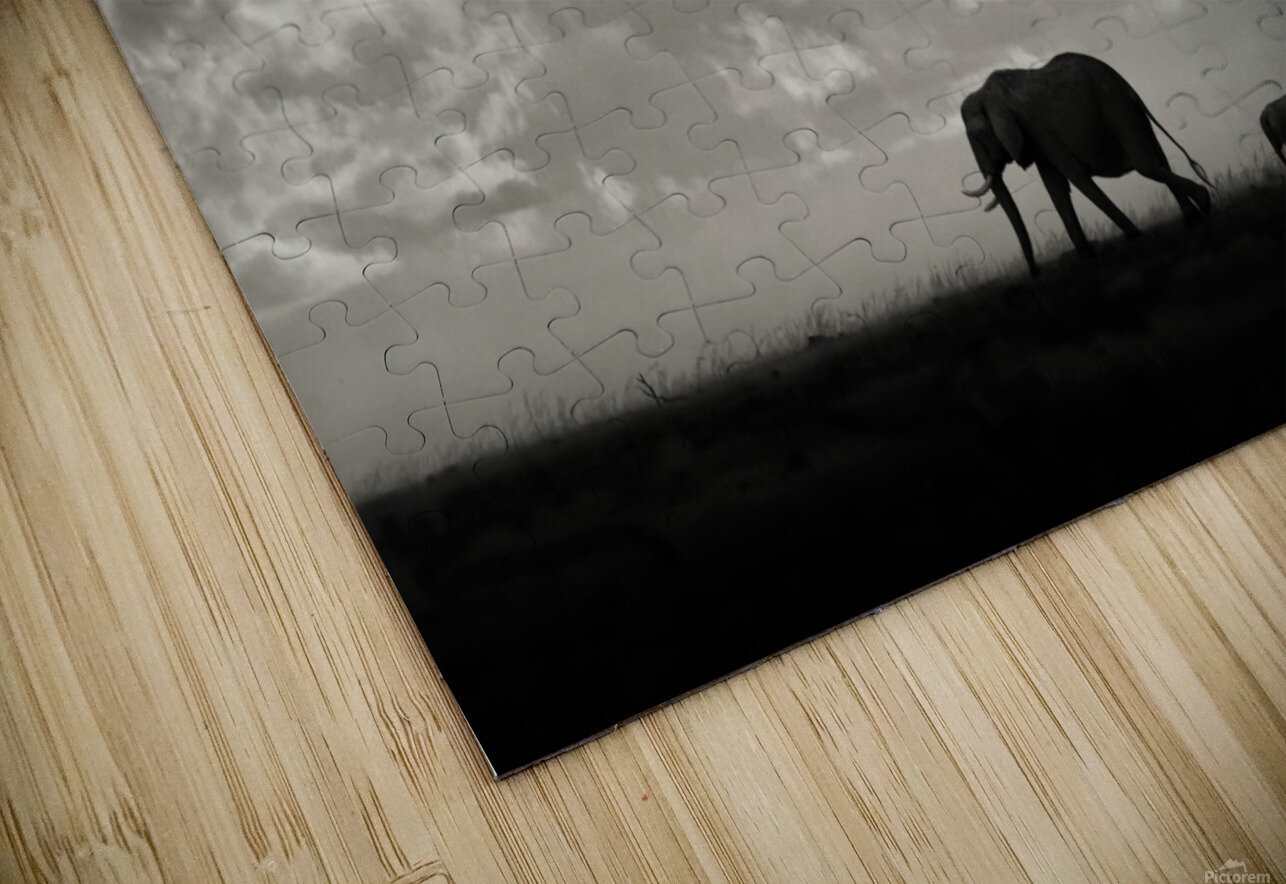 Silhouettes of Mara HD Sublimation Metal print