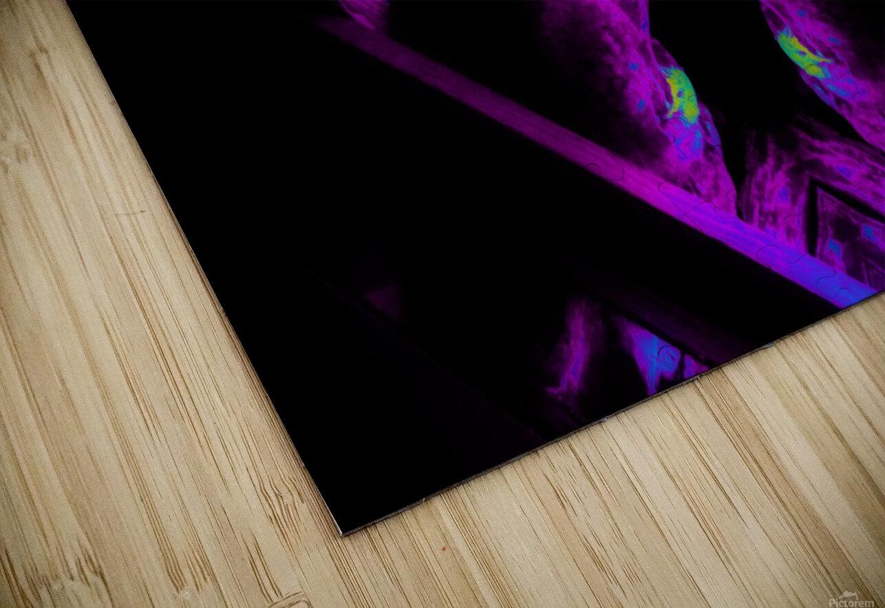 Portal  106  HD Sublimation Metal print