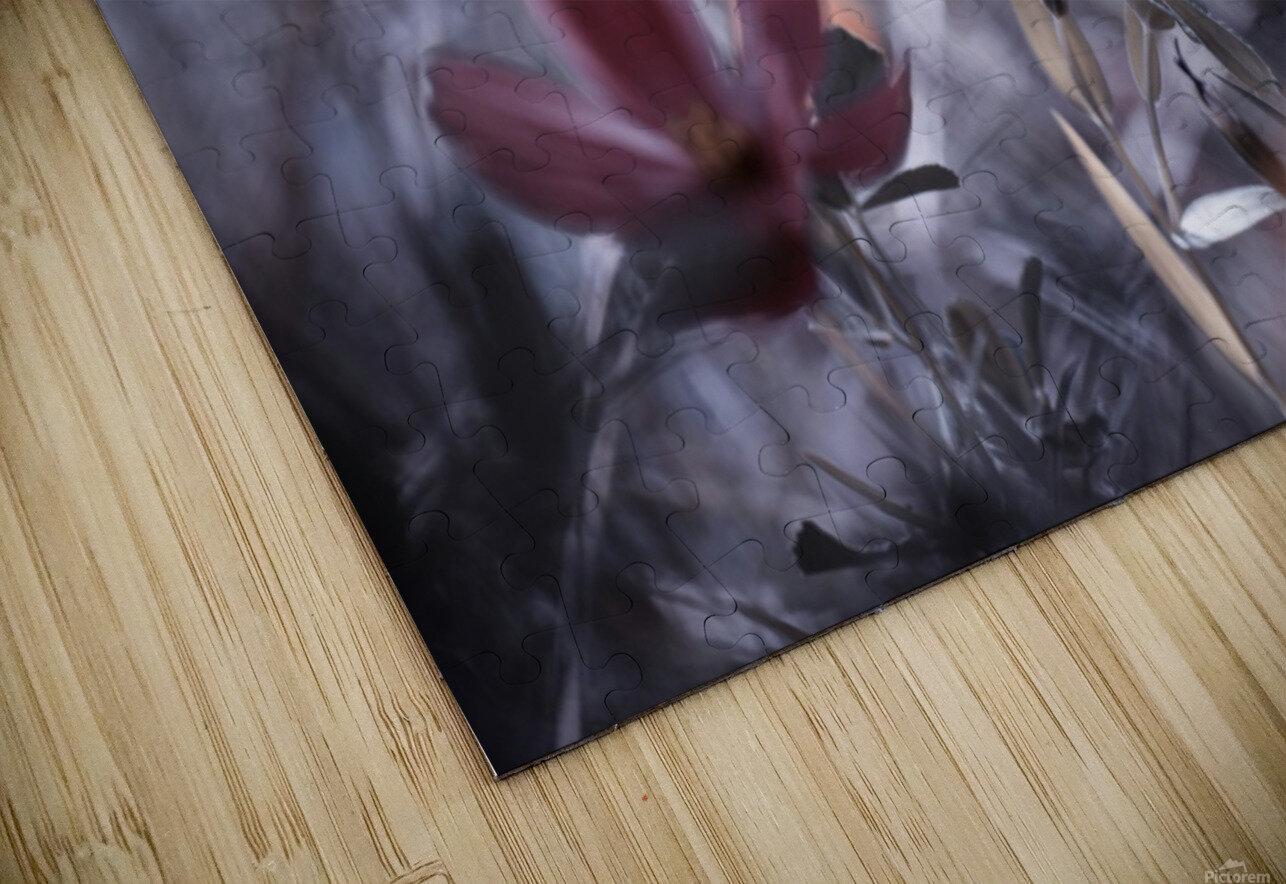 Une Fleur, une Histoire by Fabien BRAVIN  Impression de sublimation métal HD