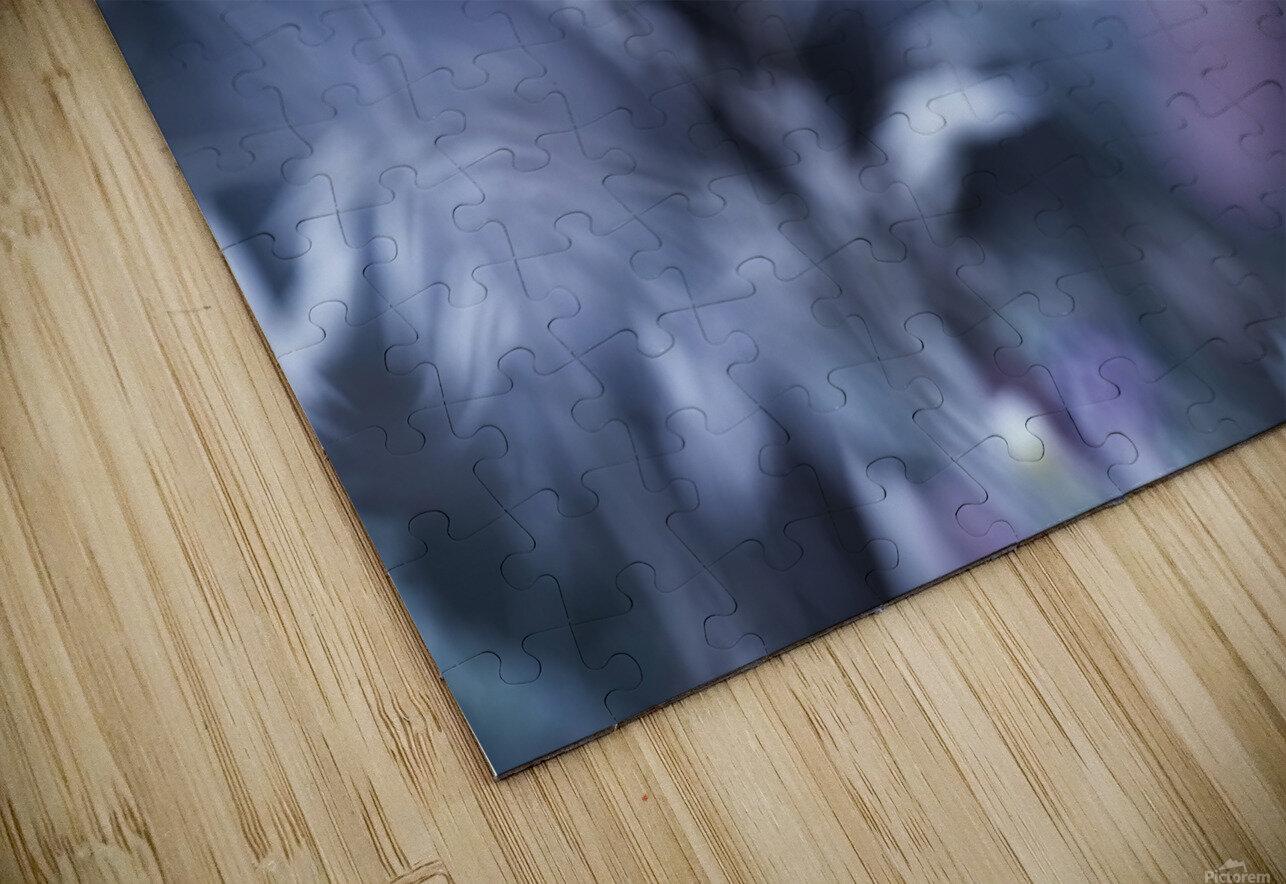 A Walk in Dreamland HD Sublimation Metal print