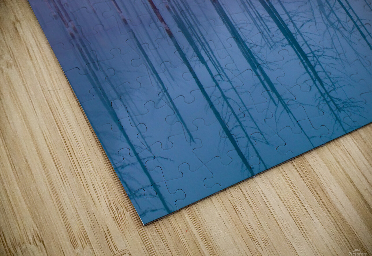 Misty Blue Pond HD Sublimation Metal print
