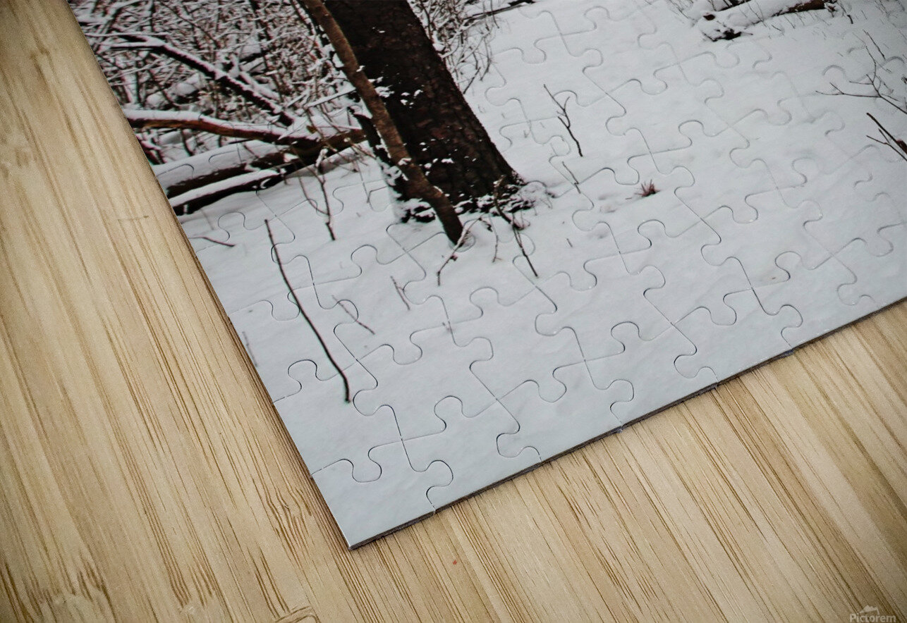 Decked In Snow HD Sublimation Metal print