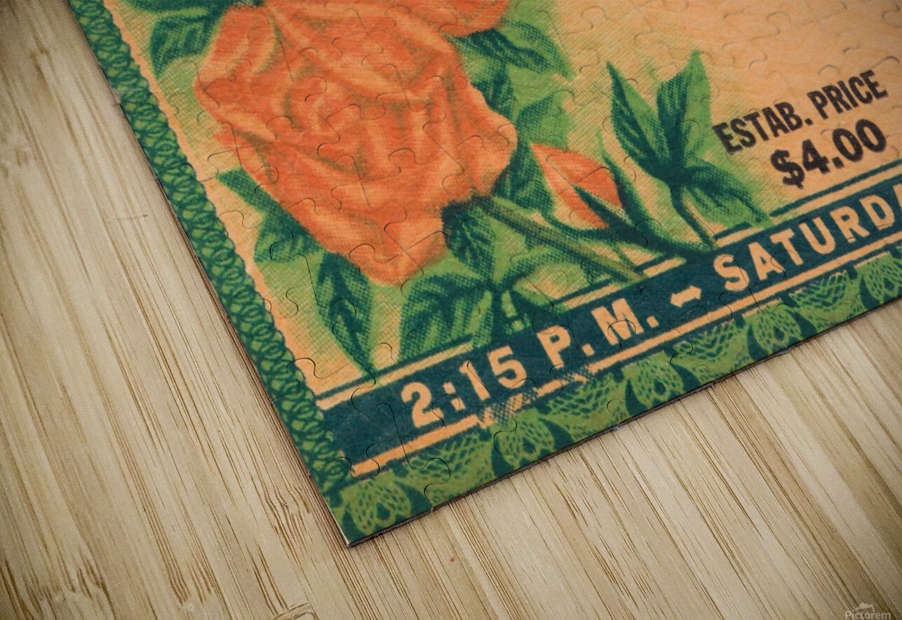 1938 Rose Bowl California Win HD Sublimation Metal print